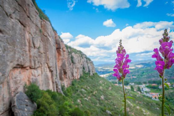 Escalada en Cova de l'Ós, Montserrat Norte.