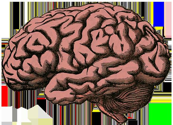 El cerebro y nuestra mente tienen un papel muy importante en la escalada.